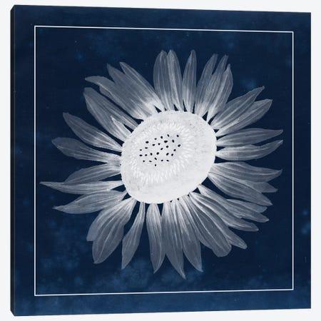 Moon Flower II Canvas Print #POP86} by Grace Popp Canvas Art