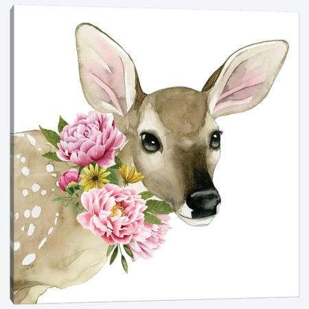 Deer Spring I Canvas Print #POP872} by Grace Popp Canvas Print