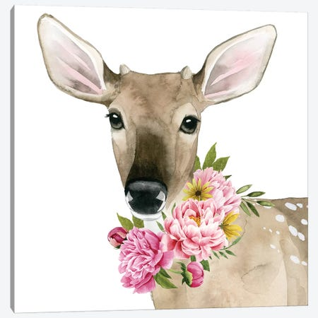Deer Spring II Canvas Print #POP873} by Grace Popp Canvas Art Print
