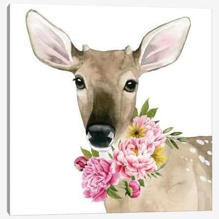 Deer Spring II Canvas Print #POP873} by Grace Popp Canvas Art Print
