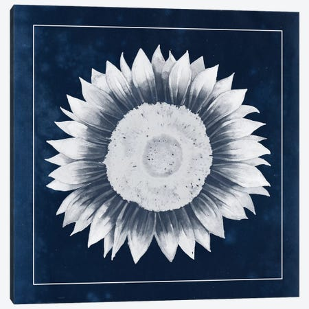 Moon Flower III Canvas Print #POP87} by Grace Popp Canvas Artwork