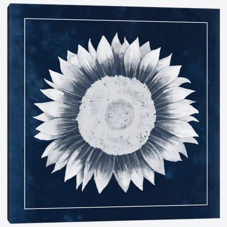 Moon Flower III Canvas Print #POP87} by Grace Popp Canvas Artwork