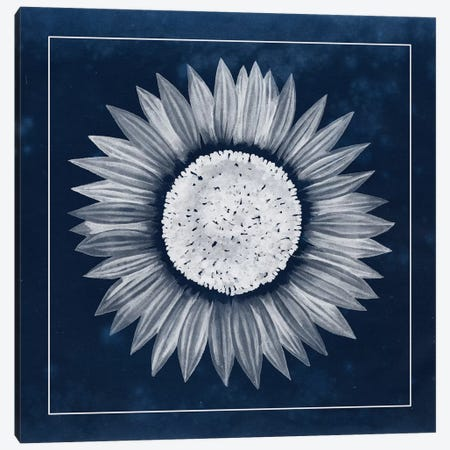 Moon Flower IV 3-Piece Canvas #POP88} by Grace Popp Canvas Art Print