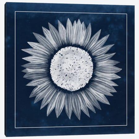 Moon Flower IV Canvas Print #POP88} by Grace Popp Canvas Art Print
