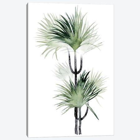 Palm In Watercolor I Canvas Print #POP89} by Grace Popp Art Print