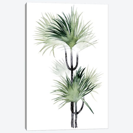 Palm In Watercolor I Canvas Print #POP89} by Grace Popp Art Print
