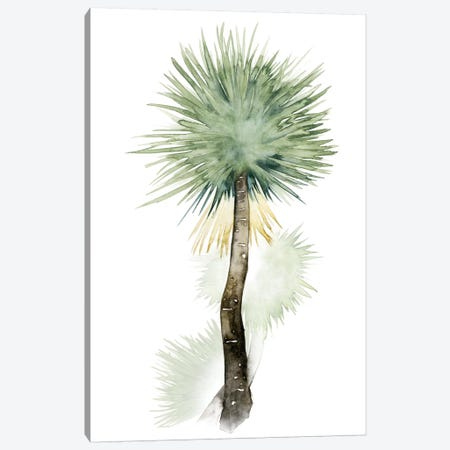 Palm In Watercolor II Canvas Print #POP90} by Grace Popp Canvas Art