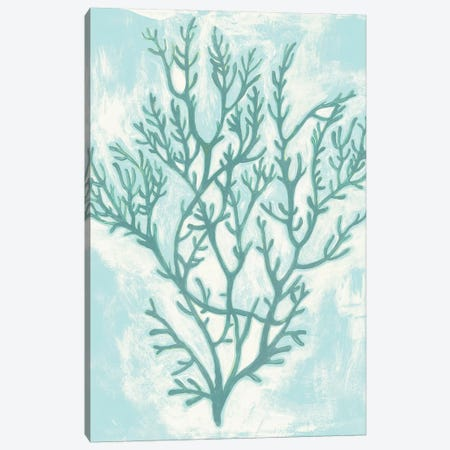 Living Teal II Canvas Print #POP913} by Grace Popp Canvas Artwork