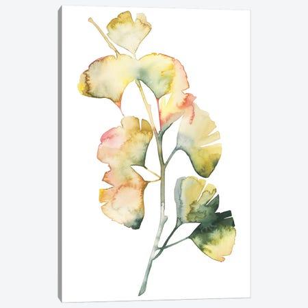 Maidenhair Branch I Canvas Print #POP918} by Grace Popp Canvas Wall Art