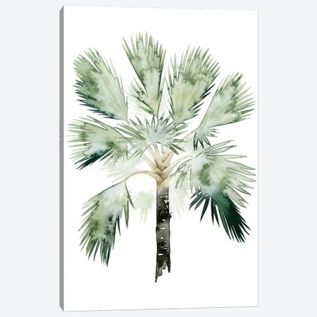 Palm Of The Tropics I Canvas Print #POP91} by Grace Popp Canvas Artwork