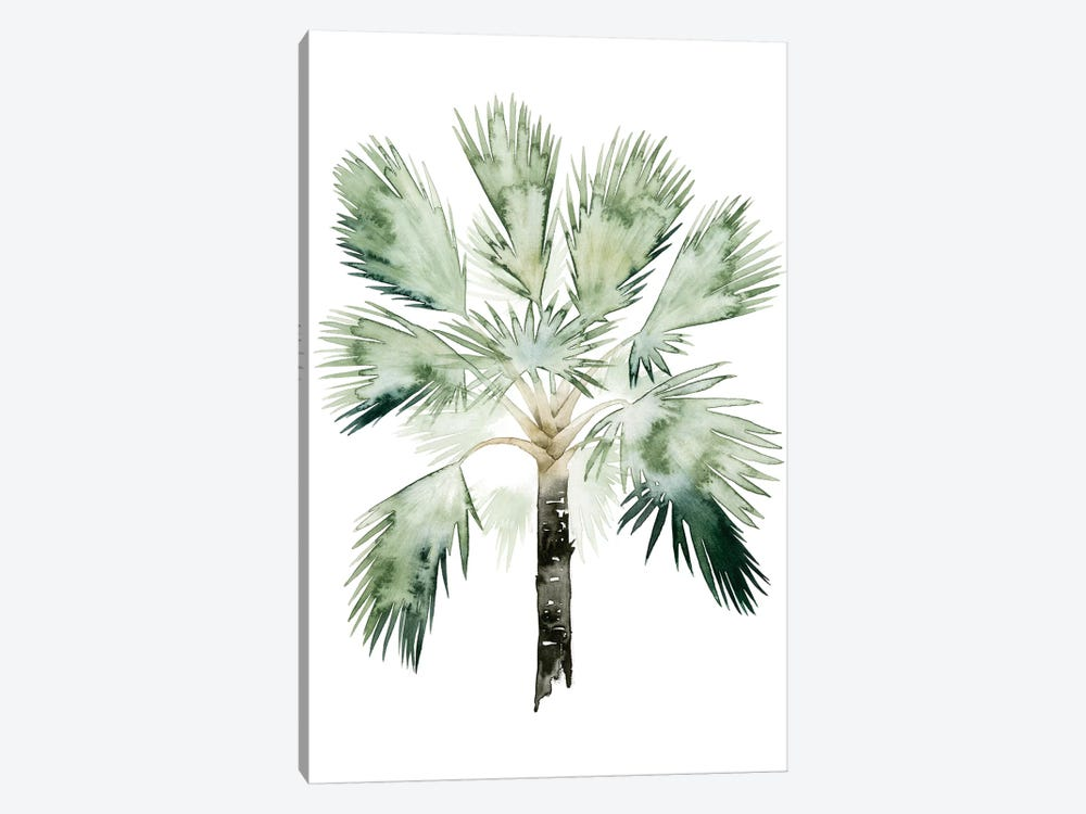 Palm Of The Tropics I by Grace Popp 1-piece Canvas Wall Art