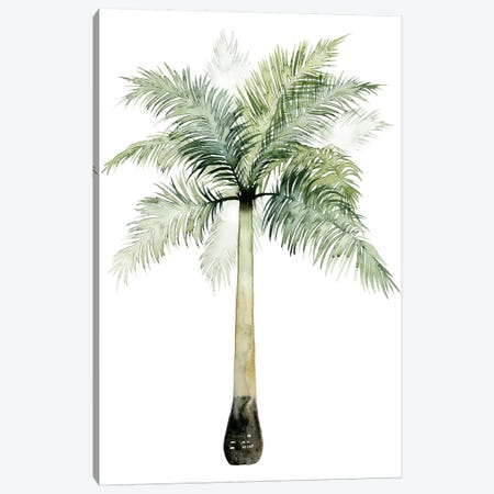 Palm Of The Tropics II Canvas Print #POP92} by Grace Popp Canvas Artwork