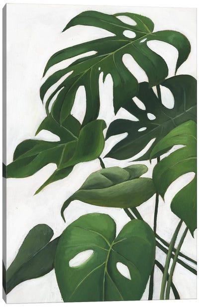 Pura Vida I Canvas Art Print