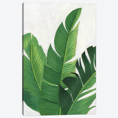 Pura Vida II Canvas Print #POP944} by Grace Popp Canvas Artwork