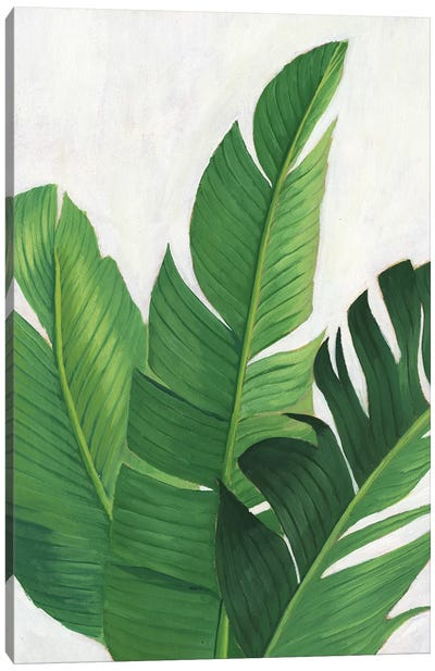 Pura Vida II Canvas Art Print