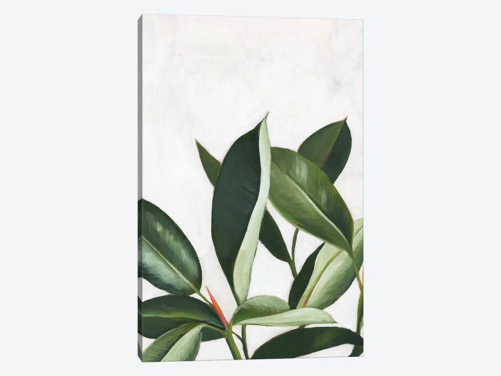 Pura Vida IV by Grace Popp 1-piece Canvas Art