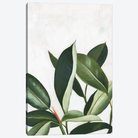 Pura Vida IV Canvas Print #POP946} by Grace Popp Canvas Art
