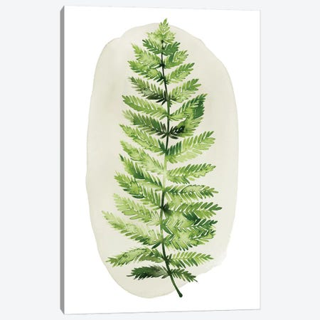 Spot Fern I Canvas Print #POP955} by Grace Popp Canvas Print