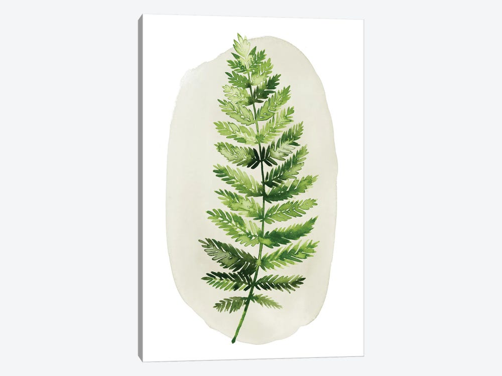 Spot Fern II by Grace Popp 1-piece Art Print