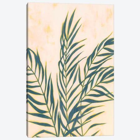 Sunset Fronds I Canvas Print #POP960} by Grace Popp Canvas Print