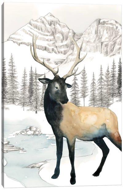 Winter Elk I Canvas Art Print