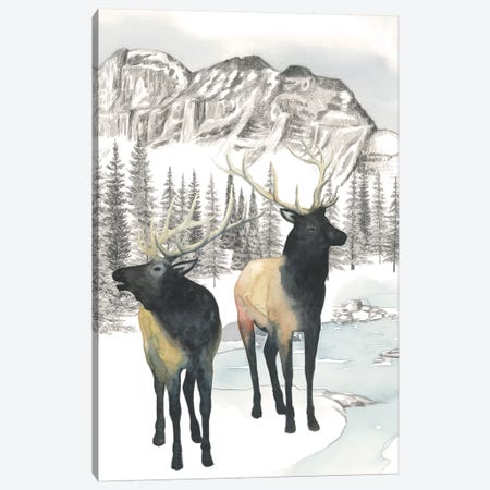 Winter Elk II Canvas Print #POP973} by Grace Popp Canvas Art
