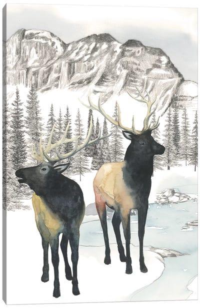 Winter Elk II Canvas Art Print
