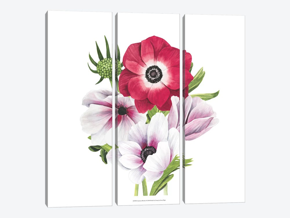Anemone Blooms I by Grace Popp 3-piece Canvas Art