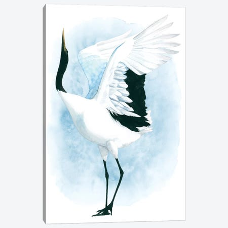 Dancing Crane I Canvas Print #POP996} by Grace Popp Canvas Print