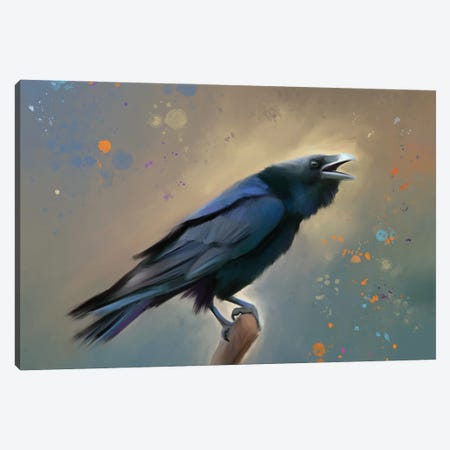 Raven I Canvas Print #POR20} by Petur Orn Art Print