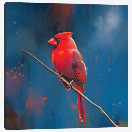 Red Cardinal Canvas Print #POR22} by Petur Orn Art Print