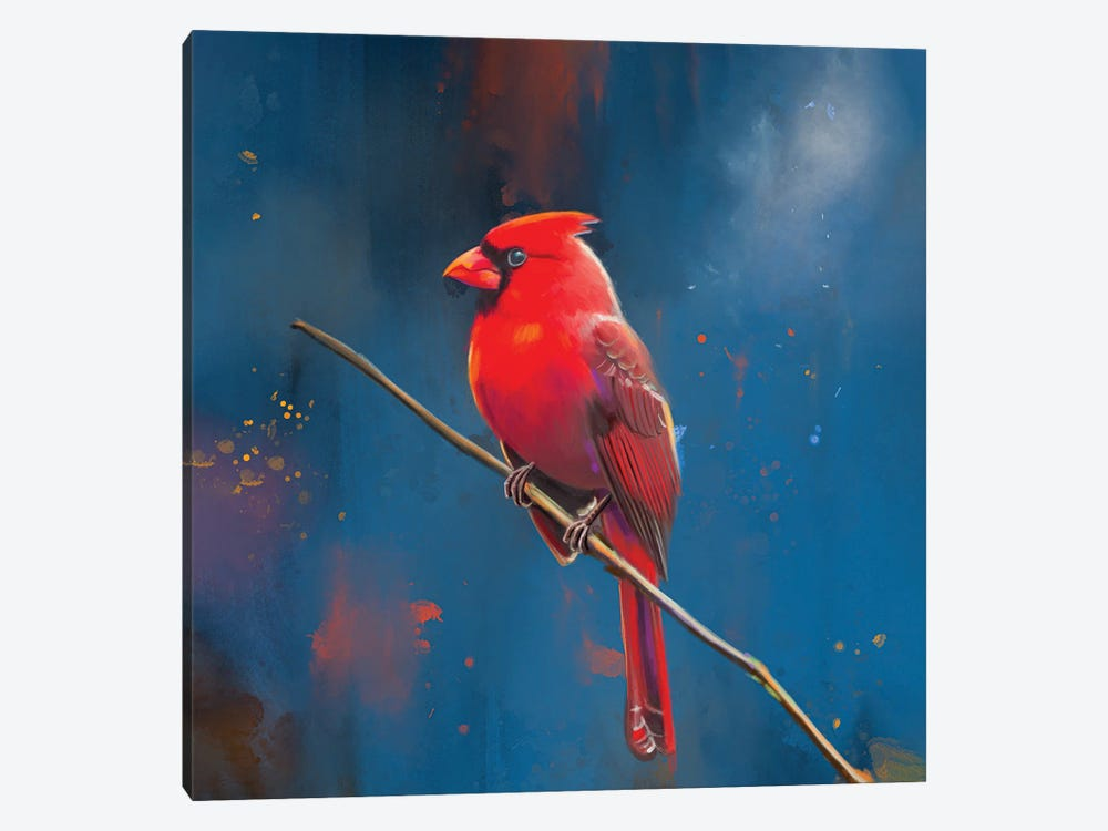 Red Cardinal by Petur Orn 1-piece Canvas Print