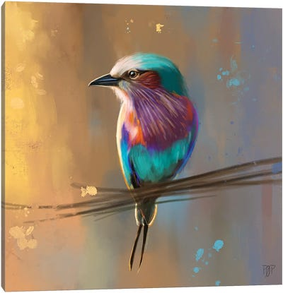 Small Bird I Canvas Art Print