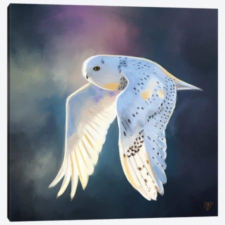 Snowy Owl I Canvas Print #POR26} by Petur Orn Canvas Art