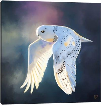Snowy Owl I Canvas Art Print