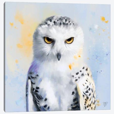 Snowy Owl II Canvas Print #POR27} by Petur Orn Canvas Art