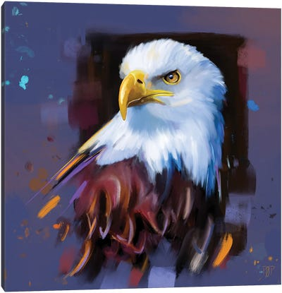 Bald Eagle I Canvas Art Print