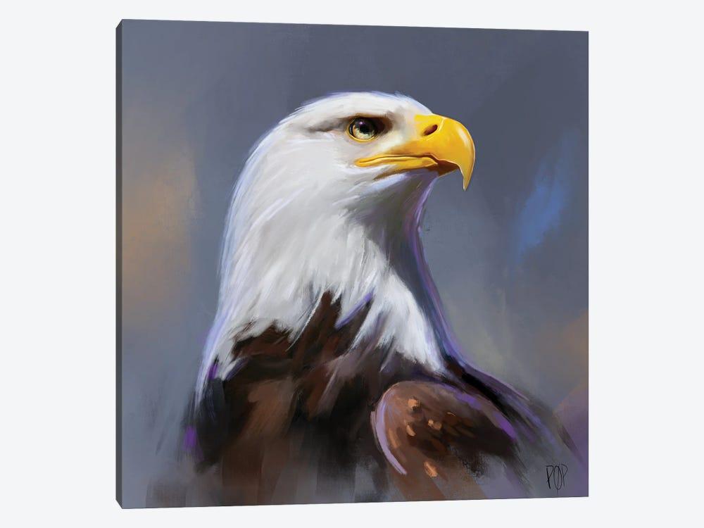 Bald Eagle II by Petur Orn 1-piece Canvas Art Print
