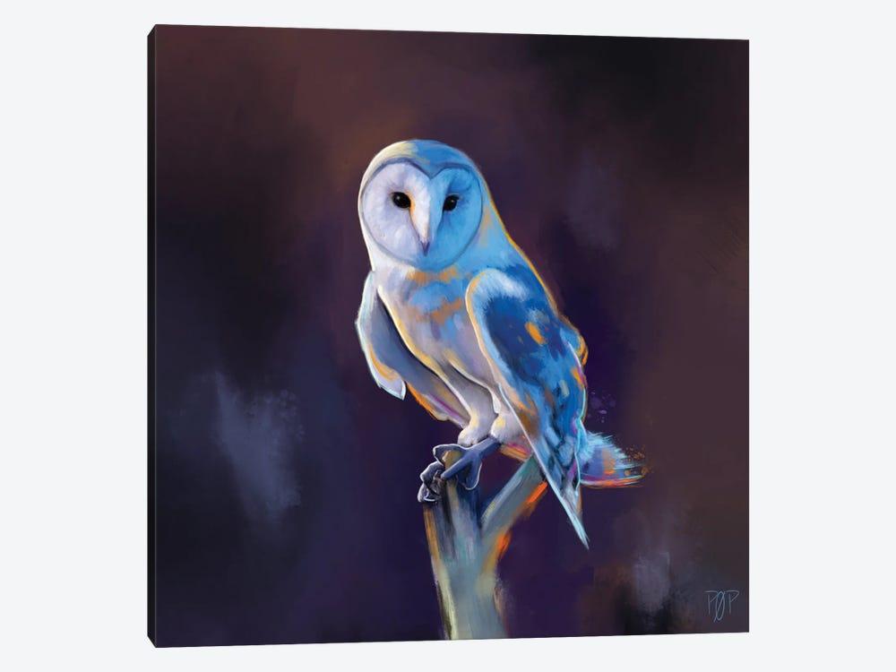 Barn Owl I by Petur Orn 1-piece Canvas Art