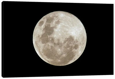 Full Moon, South America Canvas Art Print