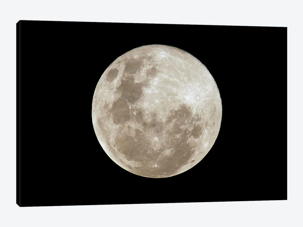 Full Moon, South America by Pete Oxford 1-piece Canvas Print