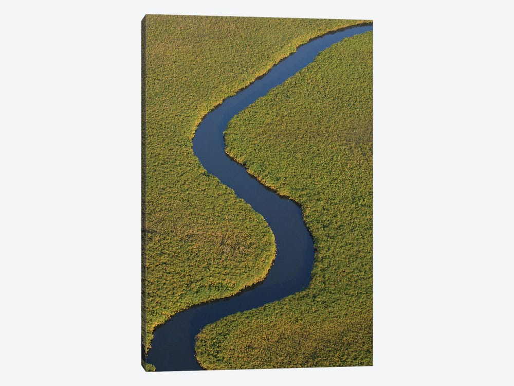 Papyrus Swamps And Channel, Aerial View, Africa by Pete Oxford 1-piece Canvas Art Print