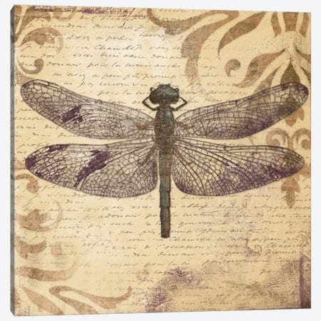 Dragonfly Canvas Print #PPI105} by Patricia Pinto Canvas Wall Art