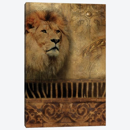 Elegant Safari IV (Lion) Canvas Print #PPI115} by Patricia Pinto Canvas Print