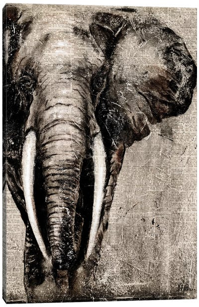 Elephant on Newspaper Canvas Art Print