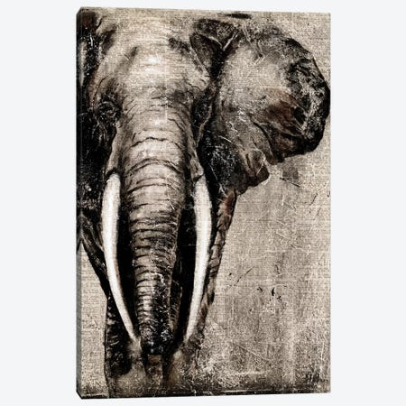 Elephant on Newspaper Canvas Print #PPI116} by Patricia Pinto Art Print