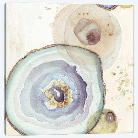 Agates Flying Square I Canvas Print #PPI11} by Patricia Pinto Canvas Artwork
