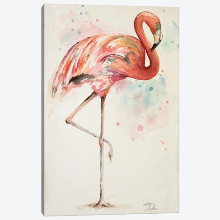 Flamingo II Canvas Print #PPI128} by Patricia Pinto Art Print