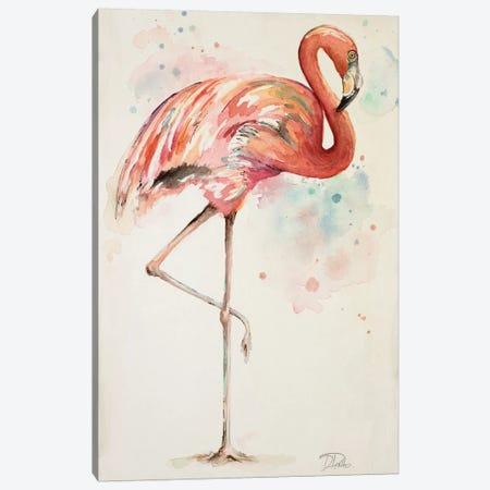 Flamingo II Canvas Print #PPI128} by Patricia Pinto Art Print