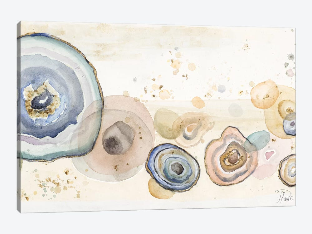 Agates Flying Watercolor by Patricia Pinto 1-piece Canvas Print